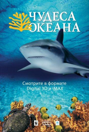 Чудеса океана 3D