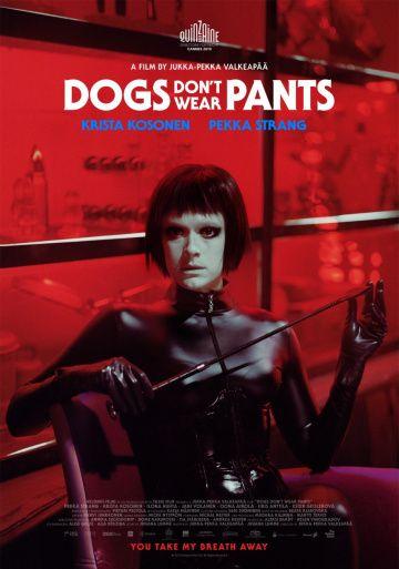 Собаки не носят штанов